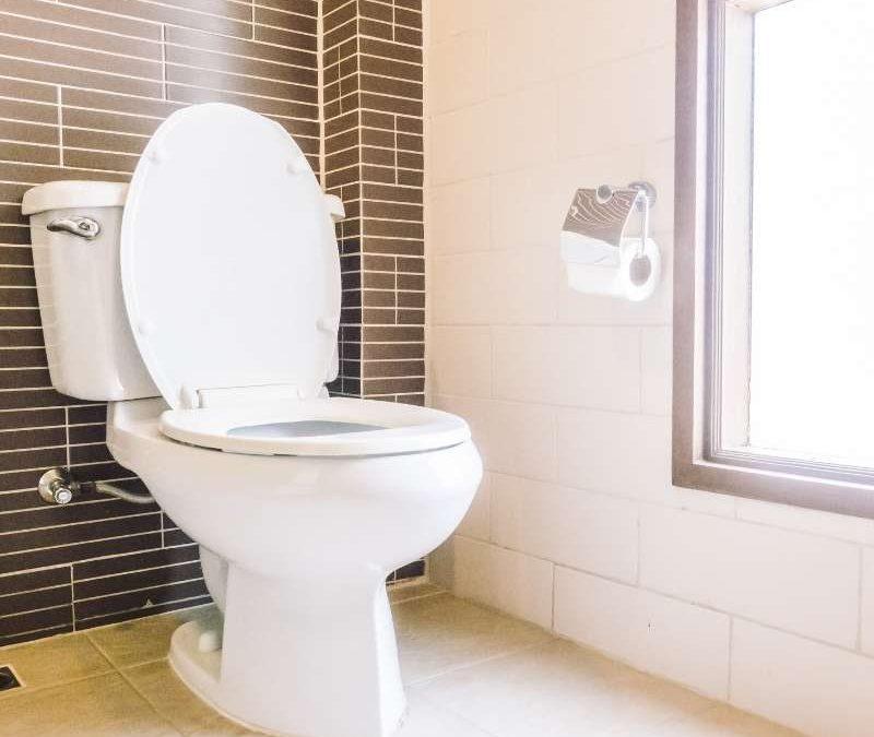 Vaso Sanitário entupido com frequência? Confira as dicas